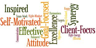 Training you team to be synergetic, effective, efficient, self-motivated, goal-focused and being excellent.
